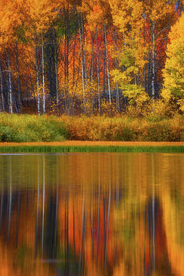 Photograph - Snake River Fall Colors by Darren White