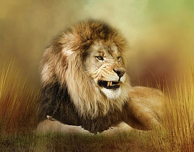 Digital Art - Snarling Lion by TnBackroadsPhotos