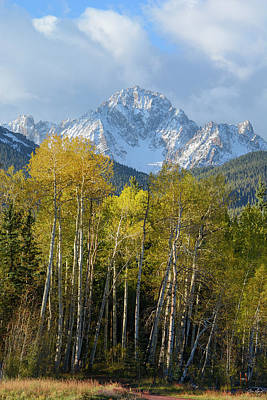 Photograph - Sneffels Autumn Vertical by Aaron Spong