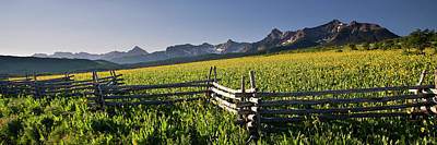 Photograph - Sneffels Fence Pano by Whit Richardson