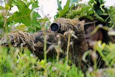 Photograph - Sniper by Adonis Williams