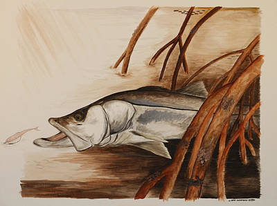 Snook In The Mangroves Art Print by Jeff Harrell