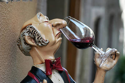 Photograph - Snooty Wine Sipper In Portugal by Carl Purcell