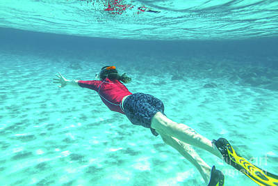 Photograph - Snorkeler Male Swimming by Benny Marty