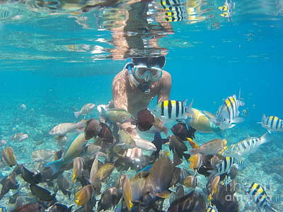 Pyrography Photograph - Snorkeling by Andy Maryanto