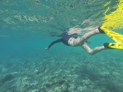 Photograph - Snorkeling At Hook Island, The Whitsundays by Keiran Lusk