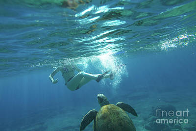 Photograph - Snorkeling With Sea Turtle by Benny Marty