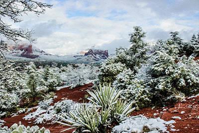 Photograph - Snow 05-034 by Scott McAllister