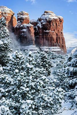 Photograph - Snow 07-111 by Scott McAllister