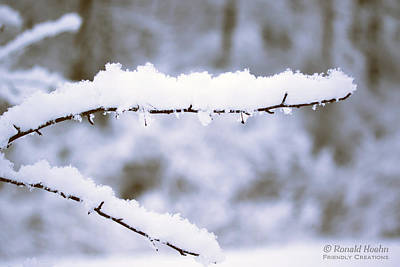 Photograph - Snow 1 by Ronald Hoehn