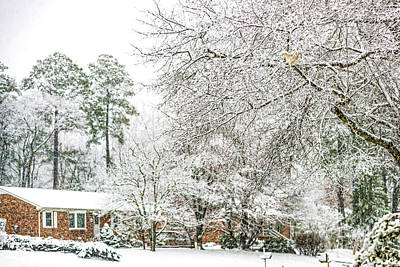 Photograph - Snow 20180312 5510t by Doug Berry