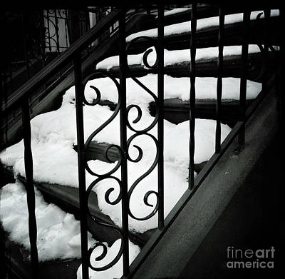 Photograph - Snow A La Mode by Miriam Danar