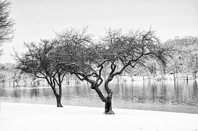 Snow Along The Schuylkill River Print by Bill Cannon