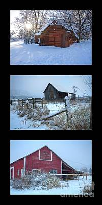 Photograph - Snow And Barn Trio by Idaho Scenic Images Linda Lantzy