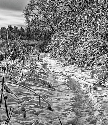 Photograph - snow and sky BW #f3 by Leif Sohlman