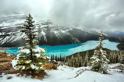 Photograph - Snow And Storms Over Peyto by Adam Jewell
