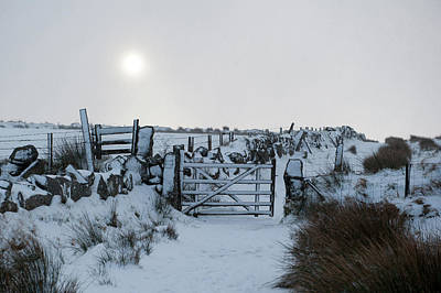 Photograph - Snow And Sunshine I by Helen Northcott