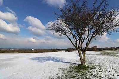 Photograph - Snow And Sunshine On Epsom Downs Surrey 1 by Julia Gavin