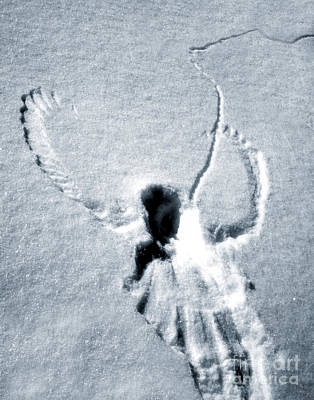 Snow Angel Art Print