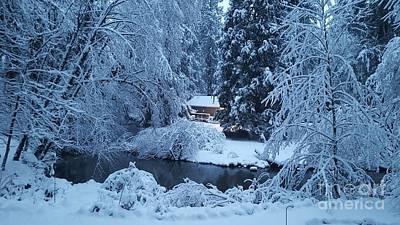 Photograph - Snow At Dawn by Debra Kaye McKrill