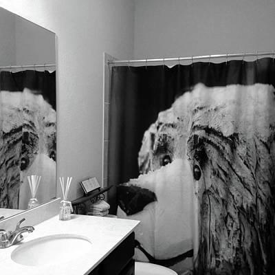 Photograph - Snow Bear Reflection Bw by Connie Fox