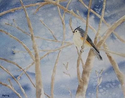 Titmouse Painting - Snow Bird by Sandra Norris
