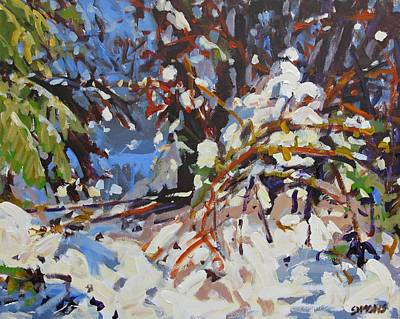 Snow Bound Art Print by Brian Simons
