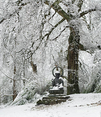 Photograph - Snow Buddha by Tim Gainey