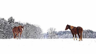 Photograph - Snow Buddies by Joe Duket