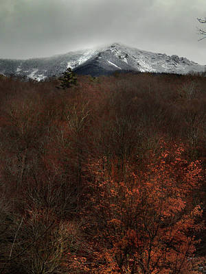 Photograph - Snow Cap At Cannon Trailhead by Nancy Griswold