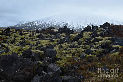 Photograph - Snow Capped Mountain Behind A Lava Field  by DejaVu Designs