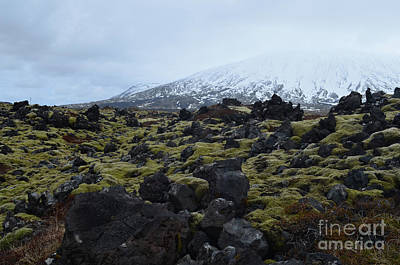 Photograph - Snow Capped Mountain In Iceland With A Lava Field  by DejaVu Designs