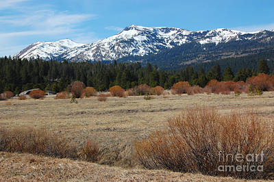 Photograph - Snow Capped Mountains by Debra Thompson