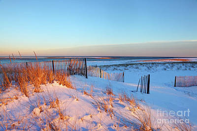 Cape Cod Photograph - Snow Covered Beach On Cape Cod by Denis Tangney Jr