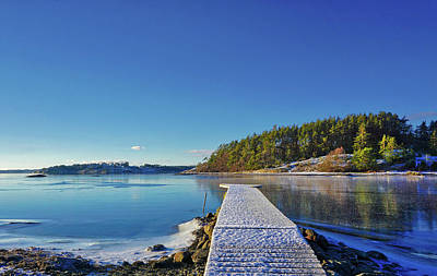 Photograph - Snow-covered Dock by Richard Stephen