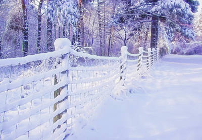 Door Locks And Handles - Snow Covered Fence by Susan Buscho
