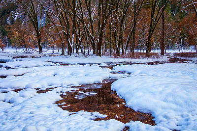 Snow Covered Field And Trees Art Print by Garry Gay