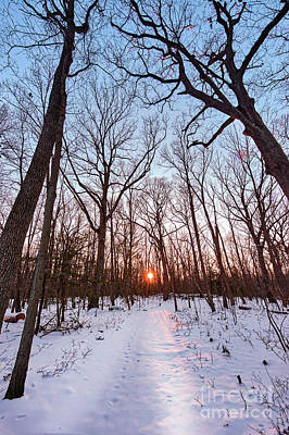 Photograph - Snow Covered Hiking Trail Through A Forest Towards A Setting Sun by Patrick Wolf