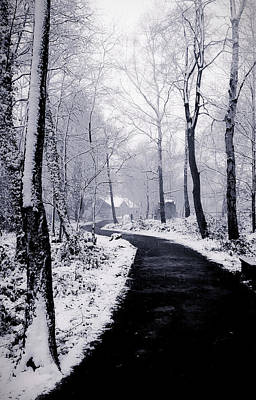 Light Blue Abstract Photograph - Snow Covered Path by Martin Newman