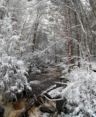 Photograph - Snow Covered River by Jack Nevitt
