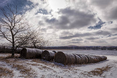 Photograph - Snow Covered by Scott Bean