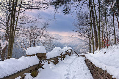 Photograph - Snow Covered Trail by Mary Almond