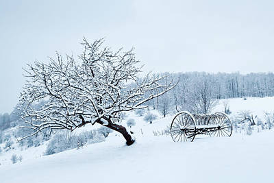 Photograph - Snow Covered Tree And Hay Rake by Alan L Graham