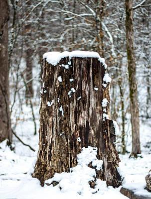 Snow Covered Tree Stump Art Print by Robert Kinser