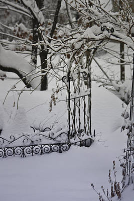 Landscape Photograph - Snow Covered Wisteria Arch by Teresa Mucha