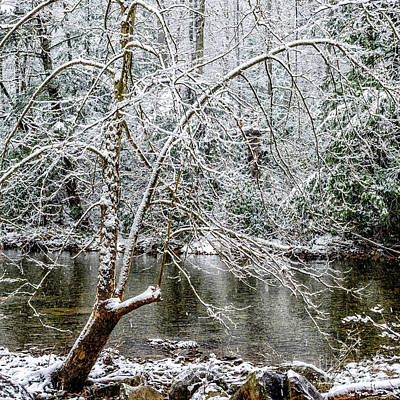 Snow Cranberry River Art Print
