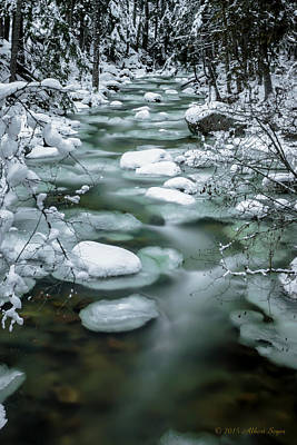 Photograph - Snow Creek by Albert Seger
