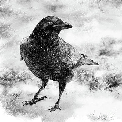 Wall Art - Drawing - To Know A Crow by Laurie Musser