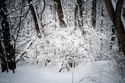 Photograph - Snow Day 4, Fieldwork, Hunter Hill, Hagerstown, Maryland, March 21 by James Oppenheim