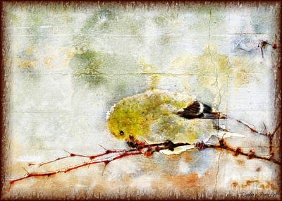 Photograph - Snow Day Goldfinch  Digital Paint 2 by Debbie Portwood